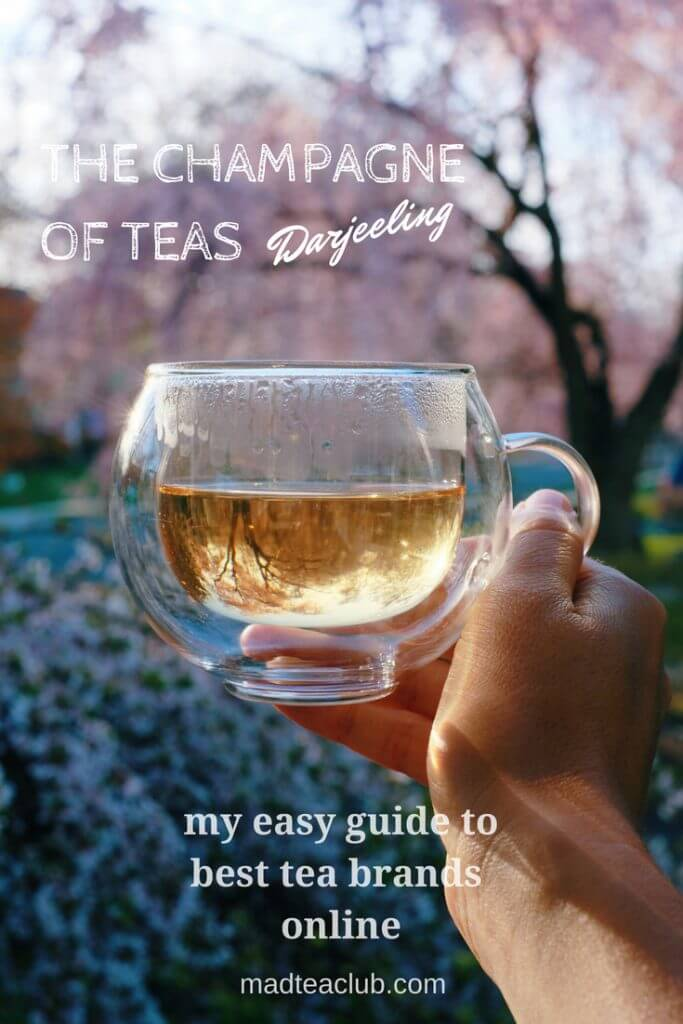 Darjeeling Tea Pinterest Design