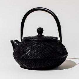 Tetsubin Cast Iron Tea Pot